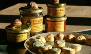Escargot de Roussillon 84